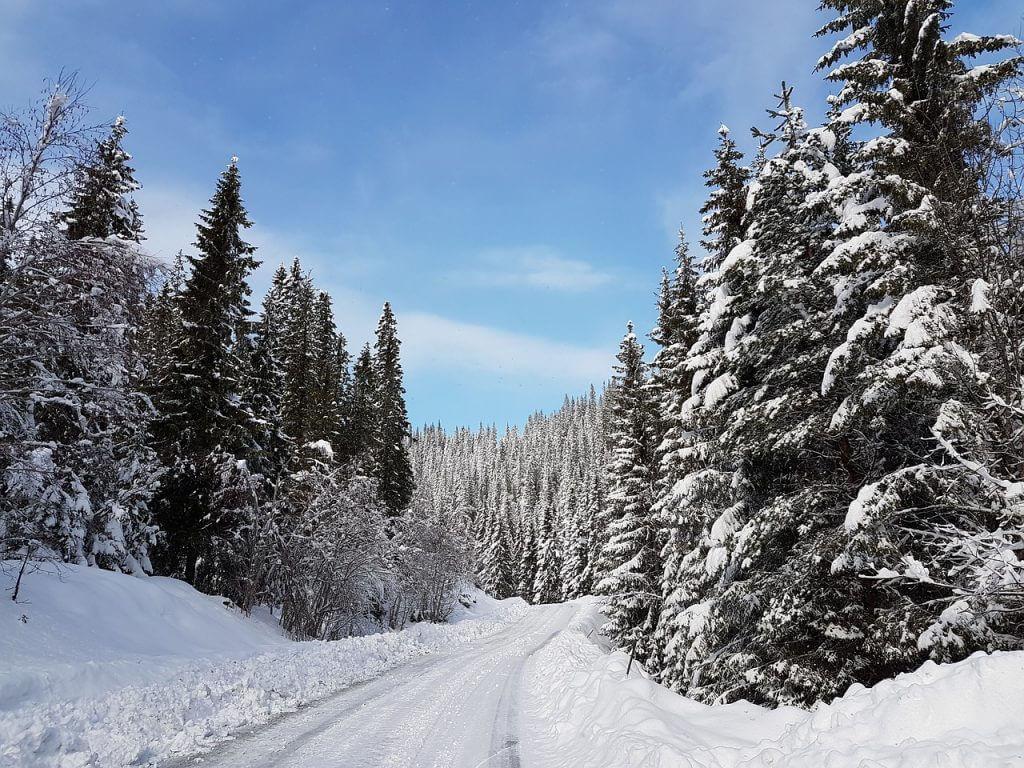 wintersport langlaufen noorwegen